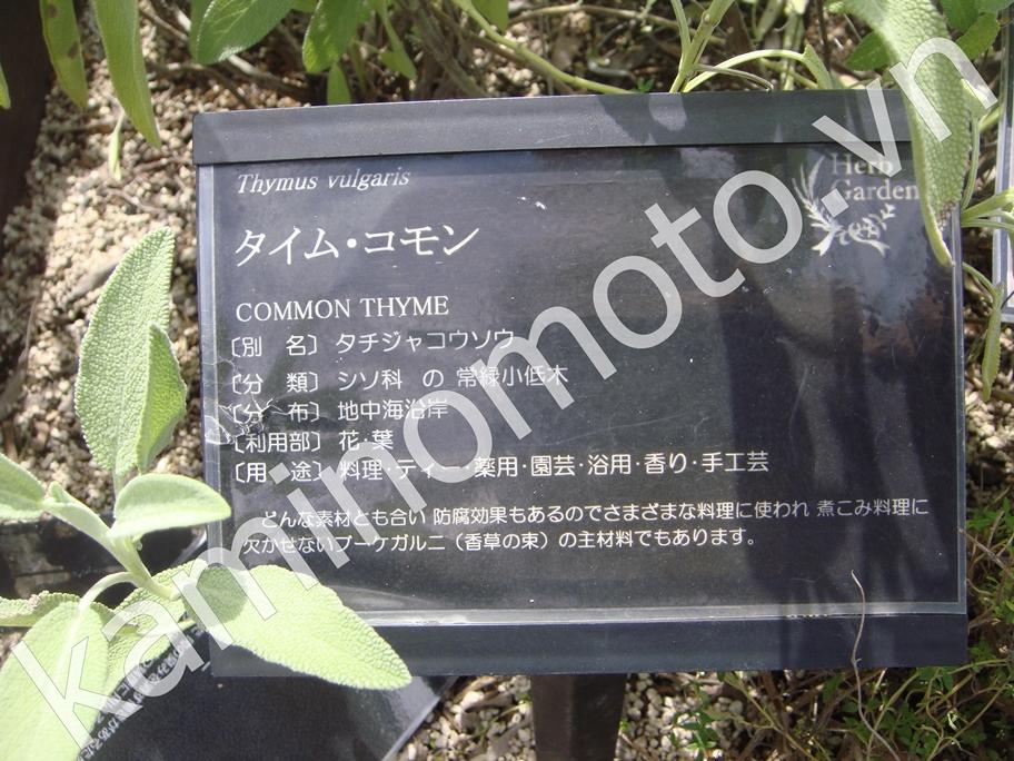 Vườn thảo dược Kaminomoto